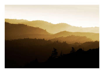 The Napa Valley by KalkmanPhotography
