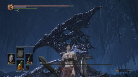 Dark Soul 3 Xing Cai vs Midir - Unexpected victory by Shredder2016