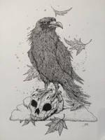 Three eyed raven by slRobin