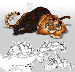 Big cats by Mau-Acheron