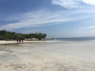 Pristine Beach by nosugarjustanger