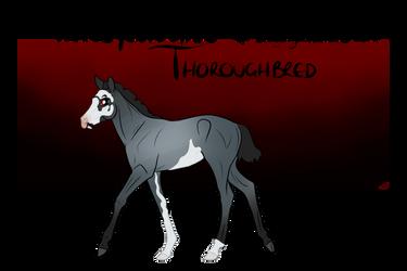 TTB Foal Design #028 by slayingallhumans