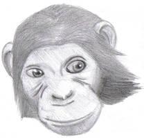 oOo Monkey by travisuped