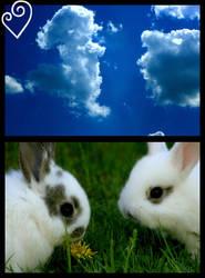 Baby Rabbit VI by black-Syla