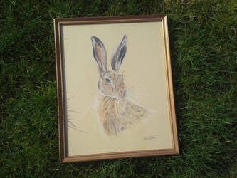 Hare by Mintnadt