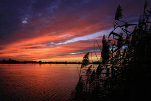 Sunset Collection: River 1 by Germanstock