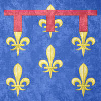 Kingdom of Naples ~ Grunge Flag (1282 - 1442) by Undevicesimus