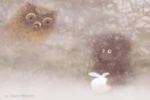 hedgehog in the fog by Platonuch