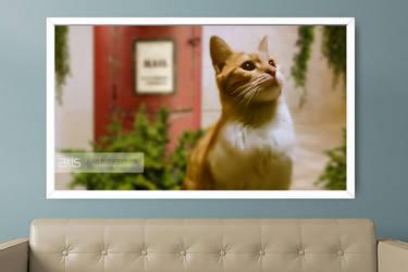 Cat In Wonderland by axisworx