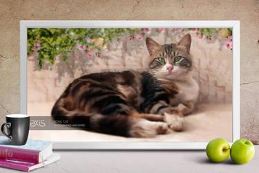 Royal Cat by axisworx