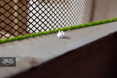 Small bunny by axisworx