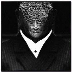 Lese Majeste - no. 1 - Mubarak by TheQine
