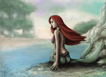 Little Mermaid by Amandia