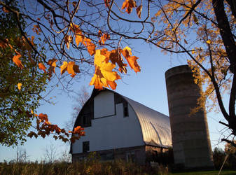 Autumn at Home by hollylalaith