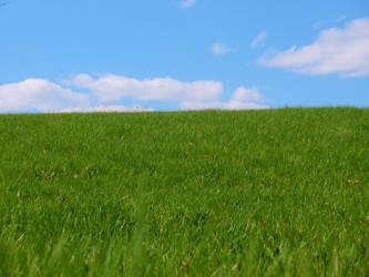 Hillside in Green by hollylalaith