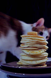 Pancakes' intruder by Bolbitius-Vitelinius