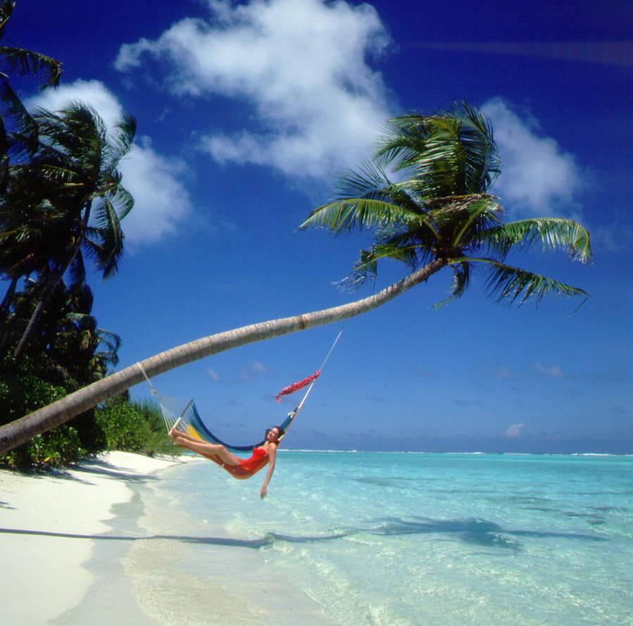 Beach Hammock By DicklessHunter ...