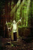 Druid 2 by kindledeath