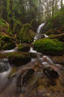 Coal Creek Falls by LAlight