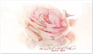 Artistic Rose by Ellysiumn-GvE