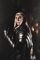 Thranduil Hobbit: The Battle of the Five Armies by TheIdeaFix