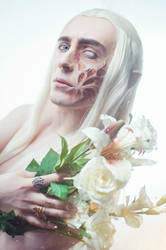 Thranduil scar face by TheIdeaFix