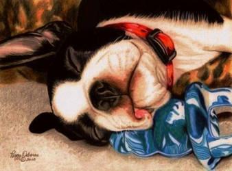Dog Tired by anniecanjump