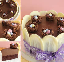 Chocolate Mousse Cake by cakecrumbs