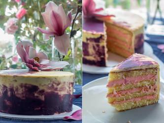 Magnolia Sponge Cake by cakecrumbs