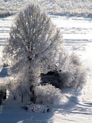 Country House in Winter by AstNav