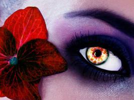 Woman's Eye by Kubaaaas
