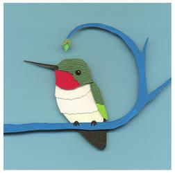 Hummingbird by renton1313