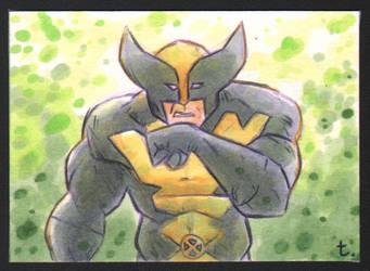 4.1.18 Wolverine by turtlespopart