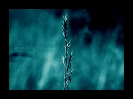 Alone and Blue by BloodAddict