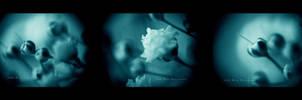Blue Symphony by BloodAddict