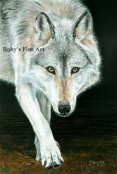 'Out of the Shadows' - Realism by robybaer