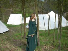 Medieval Green Stock III by DanielleFiore