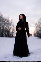 Winter Stock II by DanielleFiore