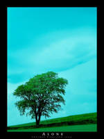 Alone by tuborg
