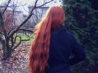 red autumn by OvcaBee