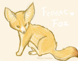 Fennec Fox by thelegendoftiffany