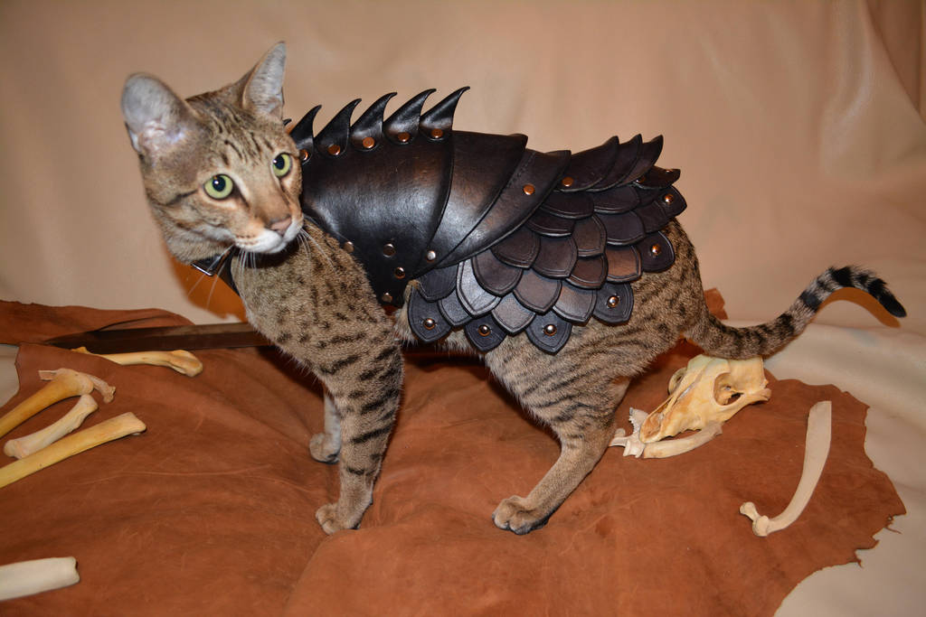 Cat Battle Armor 2 by SavagePunkStudio