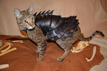 Cat Battle Armor 2 by SavagePunkStudio