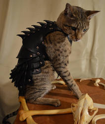 Cat Battle Armor 3 by SavagePunkStudio