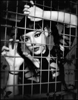 The cage by enasni