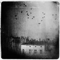City of dust by anelowy