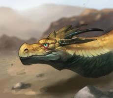 Quad Dragon Set Nr3, The Desert Dwarf by OskarKuijken