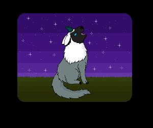 Haunted-dark-Umbreon's Profile Picture