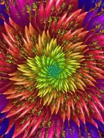 Firework by pinkal09