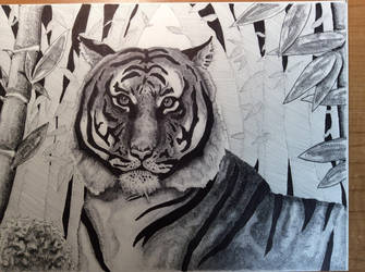 Indochinese Tiger by wildwildcat9